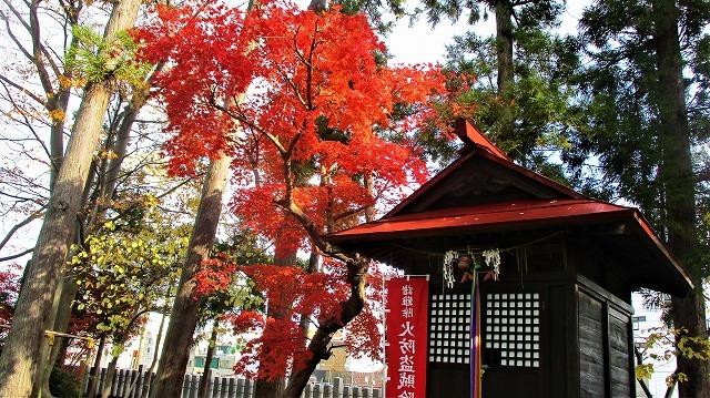 日枝神社紅葉_b0163804_14040344.jpg