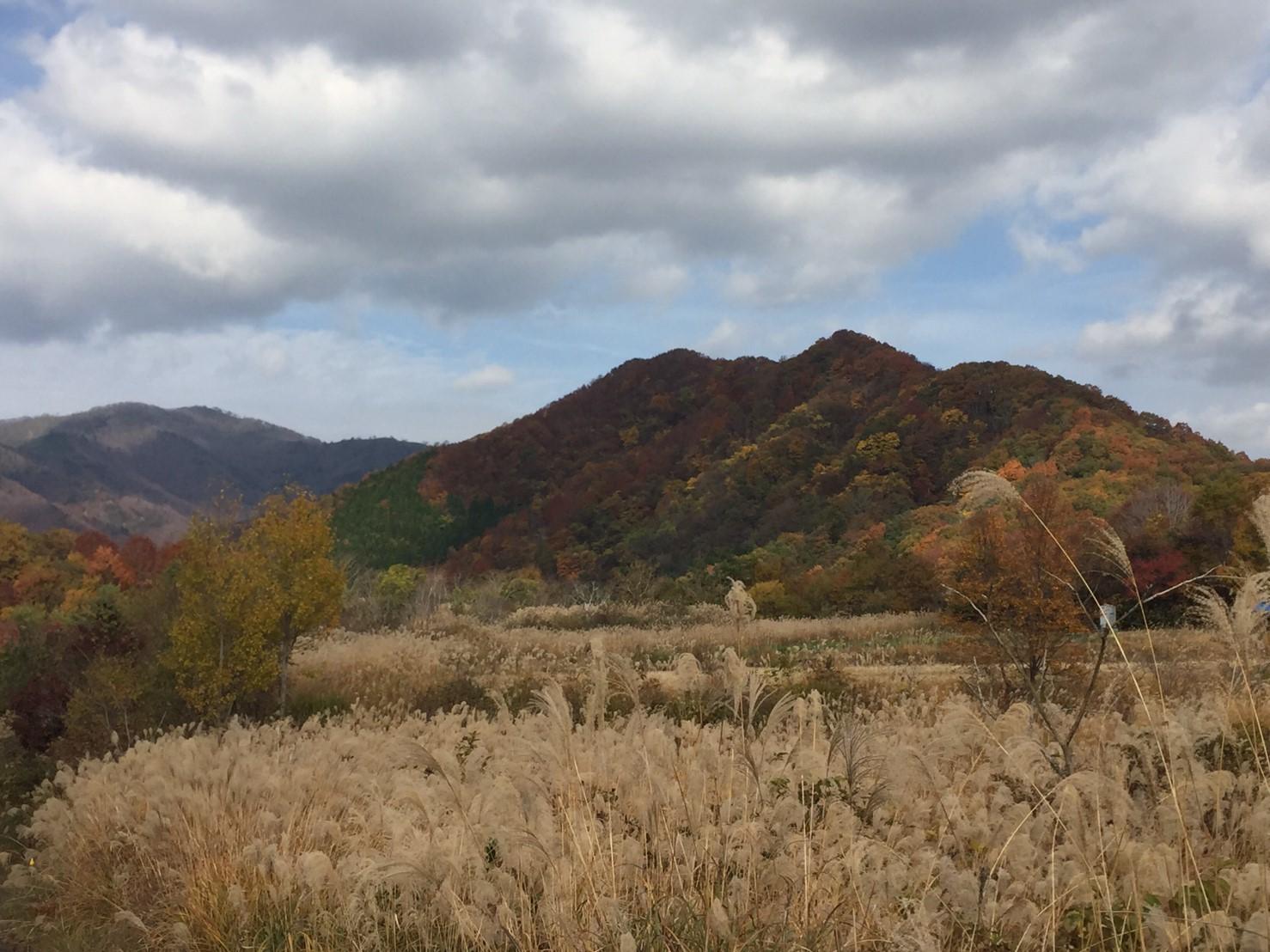 秋のトレッキング   大鹿滝_e0115904_00431370.jpg