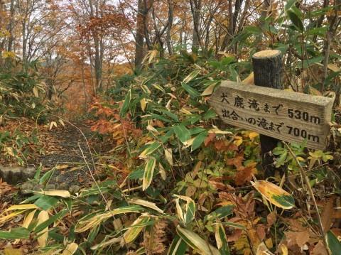 秋のトレッキング   大鹿滝_e0115904_01011139.jpg