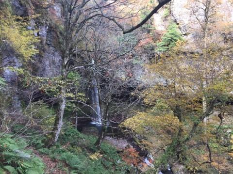 秋のトレッキング   大鹿滝_e0115904_01392635.jpg