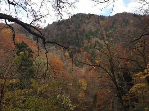 秋のトレッキング   大鹿滝_e0115904_01392688.jpg