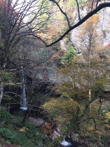 秋のトレッキング   大鹿滝_e0115904_01392722.jpg