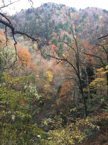 秋のトレッキング   大鹿滝_e0115904_01392737.jpg