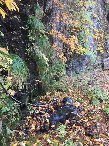 秋のトレッキング   大鹿滝_e0115904_01490680.jpg