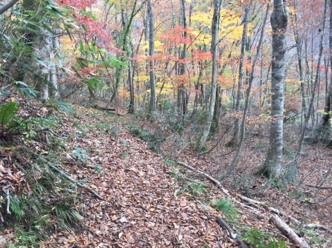 秋のトレッキング  出会の滝_e0115904_07430161.jpg