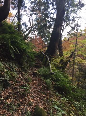 秋のトレッキング  出会の滝_e0115904_07430242.jpg