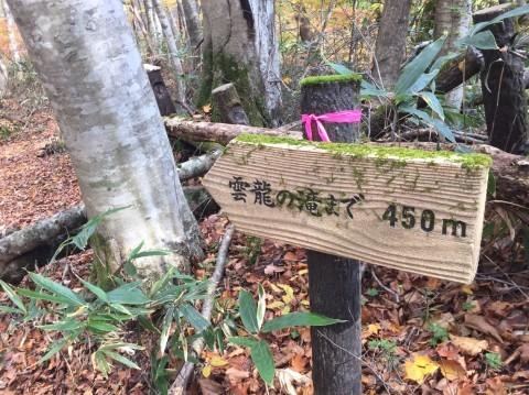 秋のトレッキング  雲竜の滝_e0115904_08011311.jpg