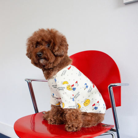 ☆ New Dog wear ☆_d0060413_16314630.jpg
