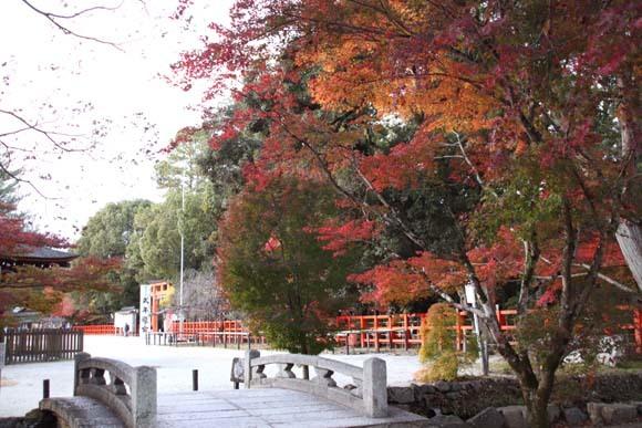 紅葉が盛り 上賀茂神社_e0048413_22563197.jpg