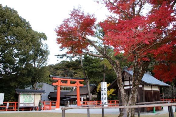 紅葉が盛り 上賀茂神社_e0048413_22570419.jpg