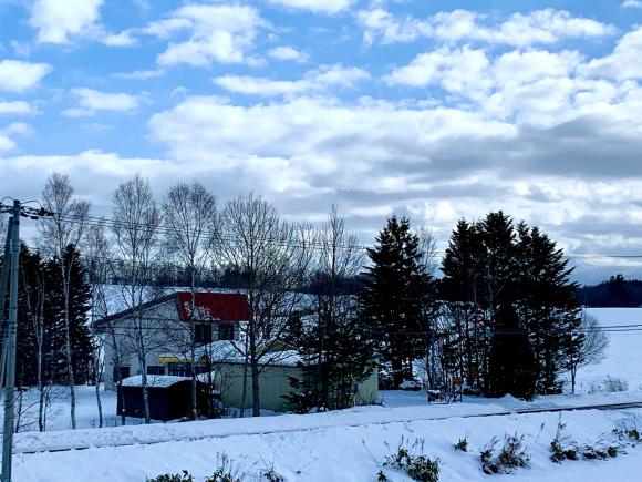 そとはすっかり雪景色です。_f0096216_10595736.jpg