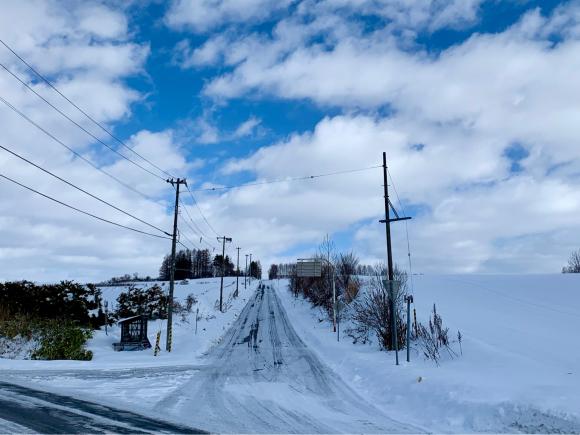 そとはすっかり雪景色です。_f0096216_11000149.jpg