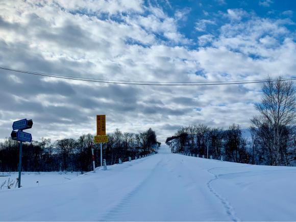 そとはすっかり雪景色です。_f0096216_11000759.jpg
