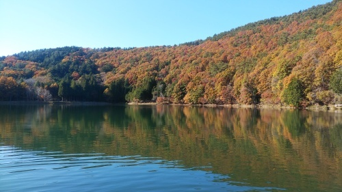四尾連湖の紅葉の巻き(^^)_d0167225_09073159.jpg