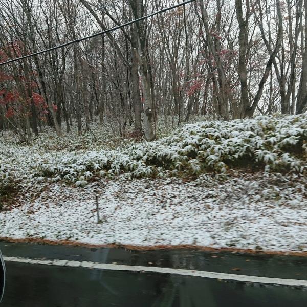 初雪ですよ_c0213830_13541460.jpg
