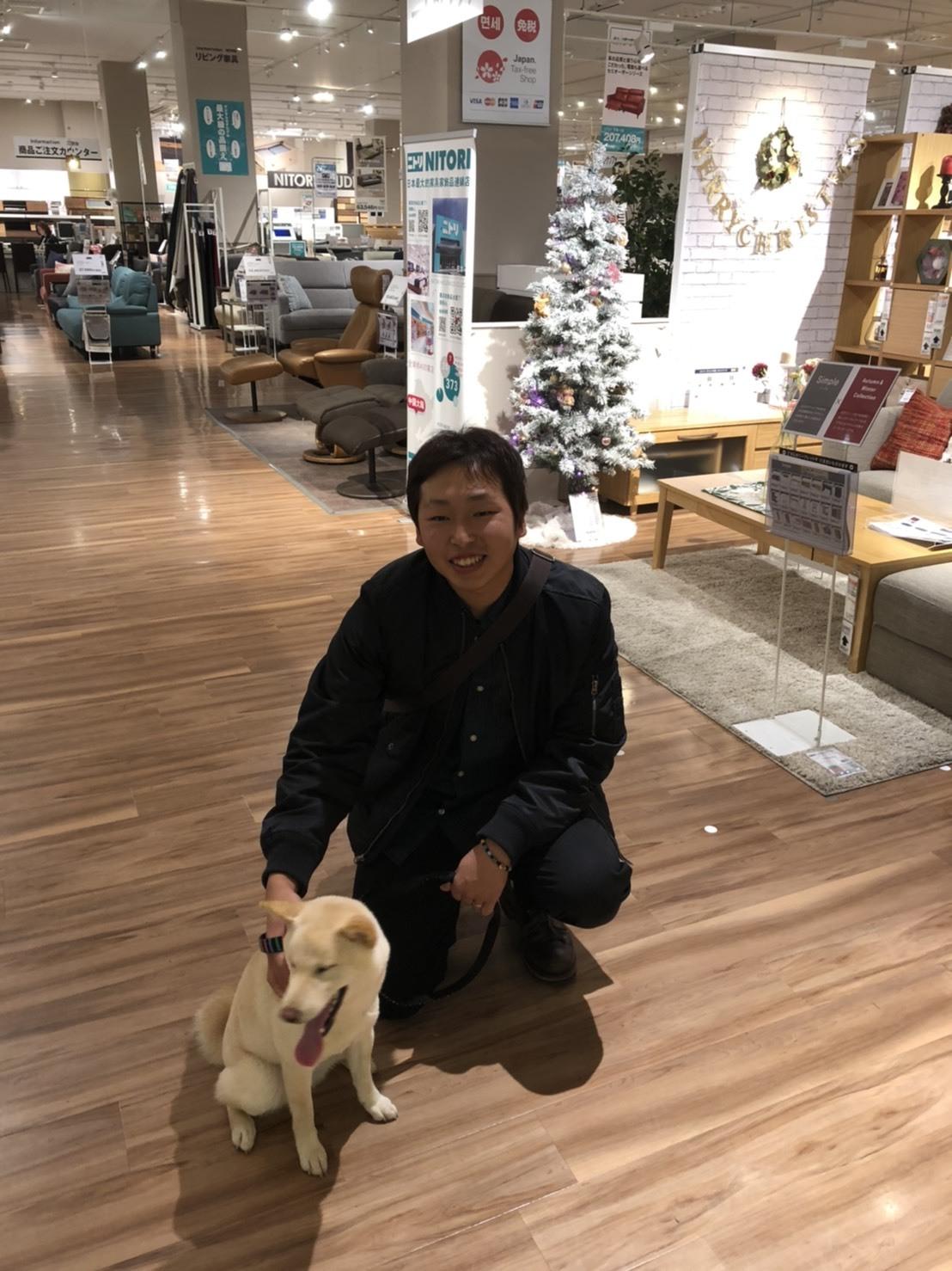 初雪 東京旅行_b0397532_04392633.jpg