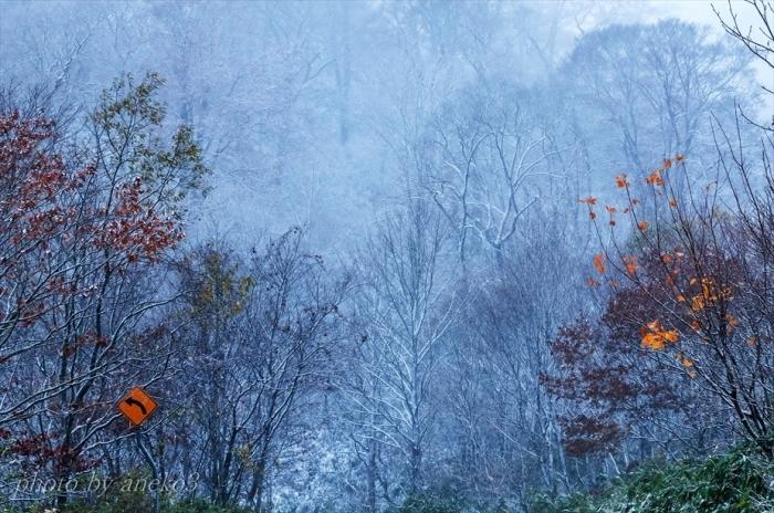 みちのく初雪の里山2_d0067934_08232279.jpg