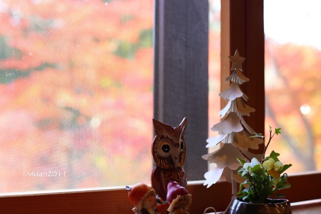 益子 森のレストラン ~紅葉を見ながらランチ~_e0227942_22210531.jpg