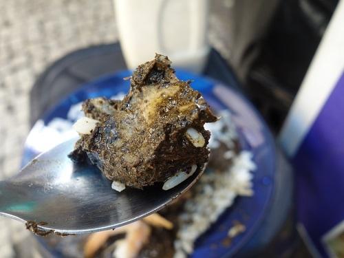 パラー州の郷土料理その3.キャッサバの葉の煮込み、マニソバ Maniçoba_c0030645_02210445.jpg