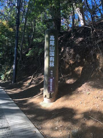 女将、高尾山に挑戦!_e0230154_16511018.jpg