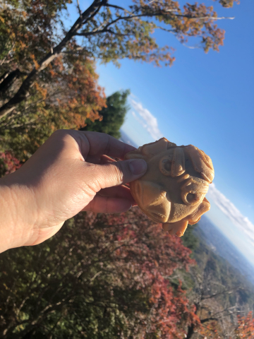 女将、高尾山に挑戦!_e0230154_17020462.jpg