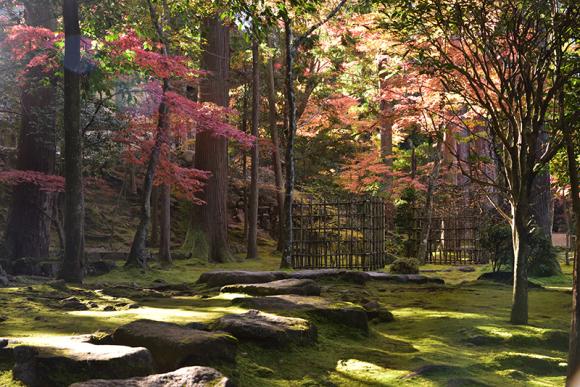 秋色の湖東三山_e0164563_15321317.jpg