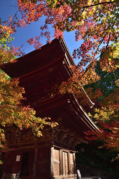 秋色の湖東三山_e0164563_15323052.jpg