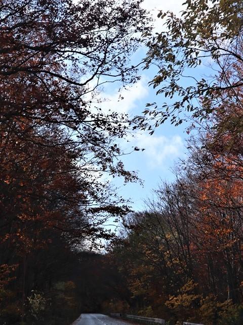 藤田八束の絶景地を訪ねて@秋深くみちのくの旅、八甲田の絶景は秋景色にある、世界に誇る八甲田山系の秋の絶景_d0181492_18332822.jpg