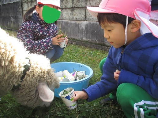 ゆり組 大町小学校に遊びに行ってきました!!!_c0212598_16292626.jpg