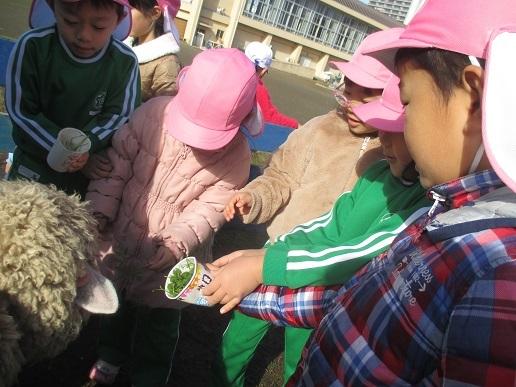 ゆり組 大町小学校に遊びに行ってきました!!!_c0212598_16293849.jpg