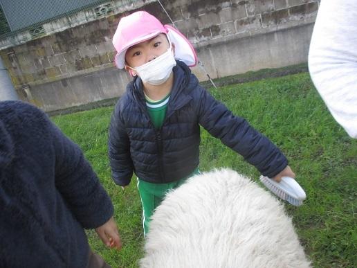 ゆり組 大町小学校に遊びに行ってきました!!!_c0212598_16293926.jpg