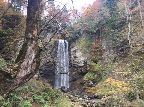 秋のトレッキング  雲竜の滝_e0115904_10551047.jpg
