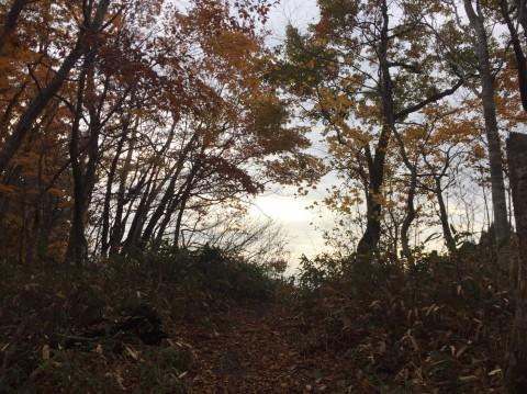 秋のトレッキング  雲竜の滝_e0115904_12155474.jpg