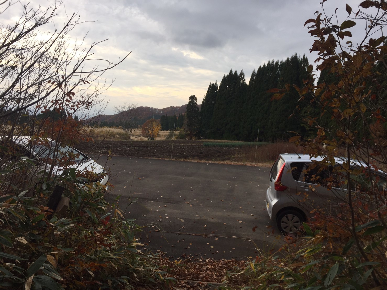 秋のトレッキング  雲竜の滝_e0115904_12155869.jpg