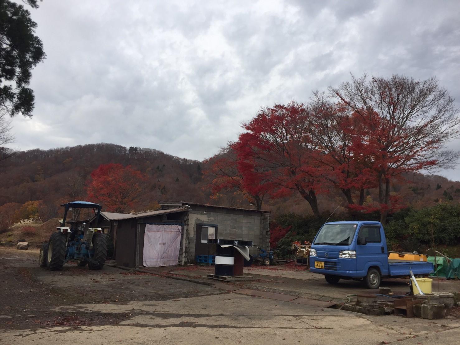 秋のトレッキング  雲竜の滝_e0115904_12260589.jpg