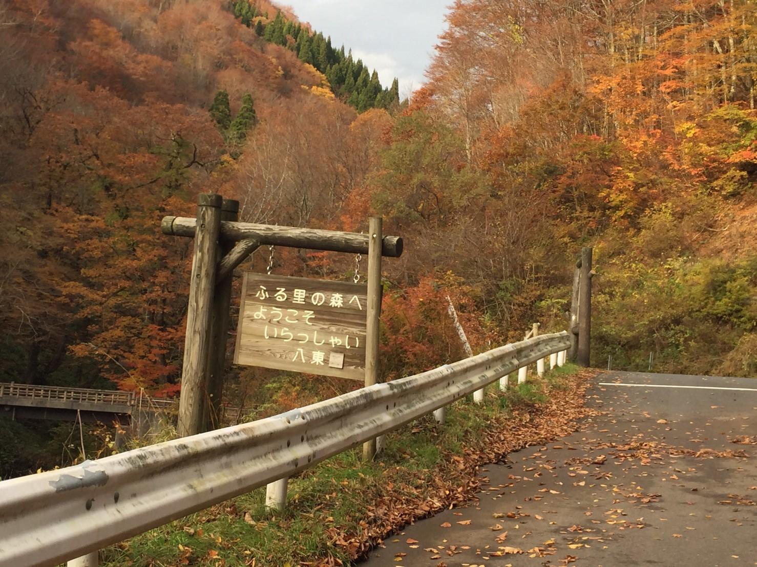 秋のトレッキング  雲竜の滝_e0115904_12324405.jpg