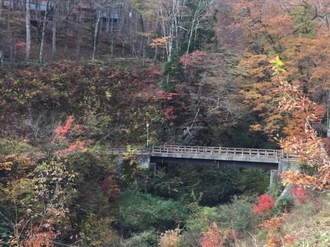 秋のトレッキング  雲竜の滝_e0115904_12324434.jpg