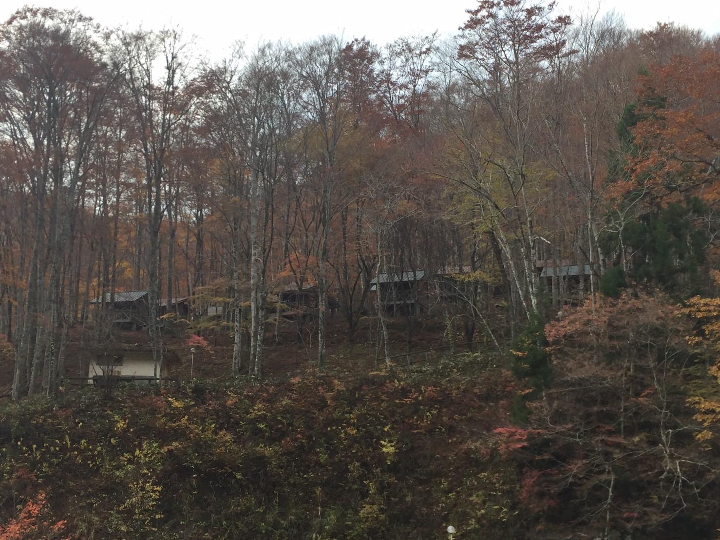 秋のトレッキング  雲竜の滝_e0115904_12363466.jpg