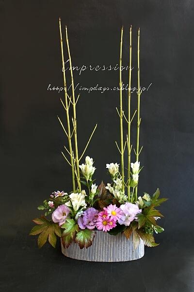 定期装花から_a0085317_16184051.jpg