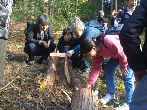 第11期2年生 第6回目「木材」_b0186729_10533521.jpg