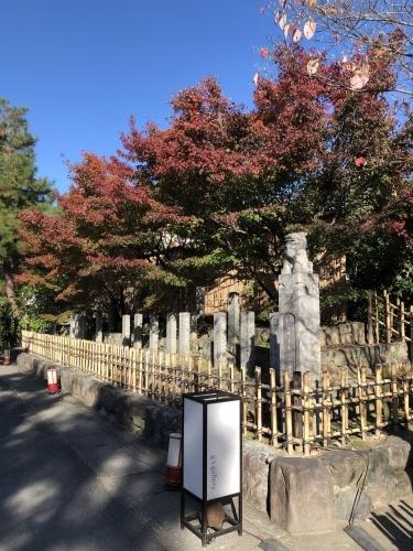 嵐山も紅葉真っ盛り〜!_a0197730_16085968.jpeg