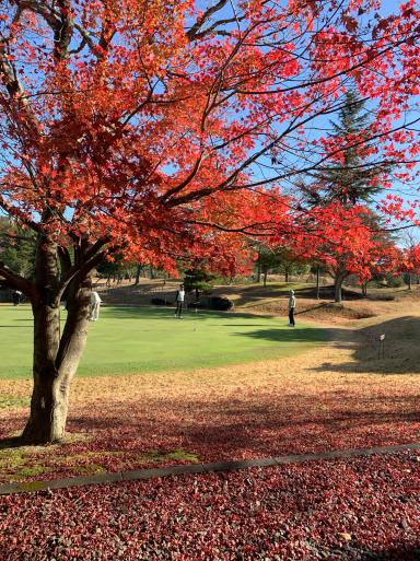 ゴルフ日和_c0223630_10110218.jpg