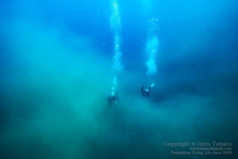 大隅諸島・硫黄島の海 -サンゴ調査より-_b0186442_19301538.jpg