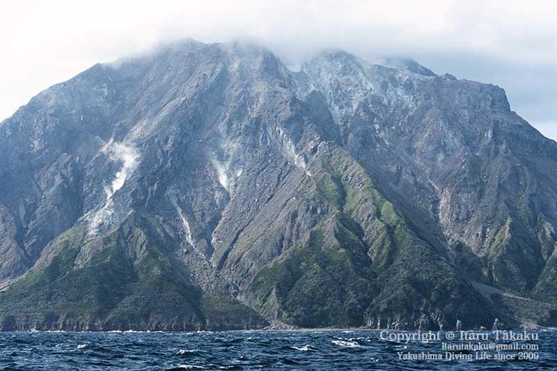 大隅諸島・硫黄島の海 -サンゴ調査より-_b0186442_19301682.jpg