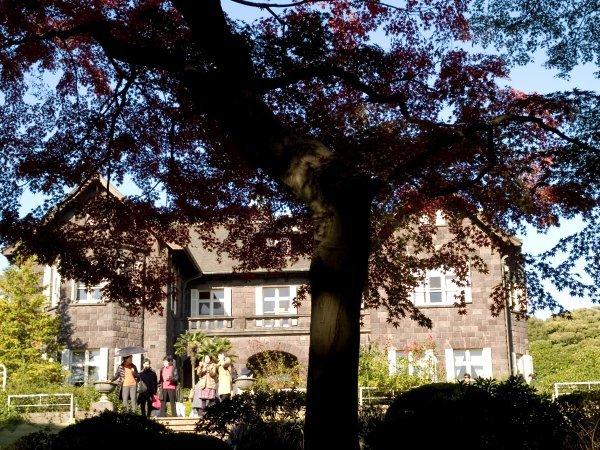 旧古河庭園 薔薇と紅葉(3) Olympus E-1_e0129750_17013810.jpg