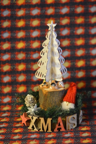 ちょっとみんなと違うクリスマス♪_b0307951_23555680.jpg