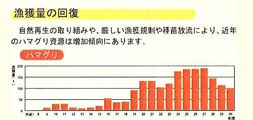 2019.10.28 長良川河口堰県民調査団(3)_f0197754_21005999.jpg