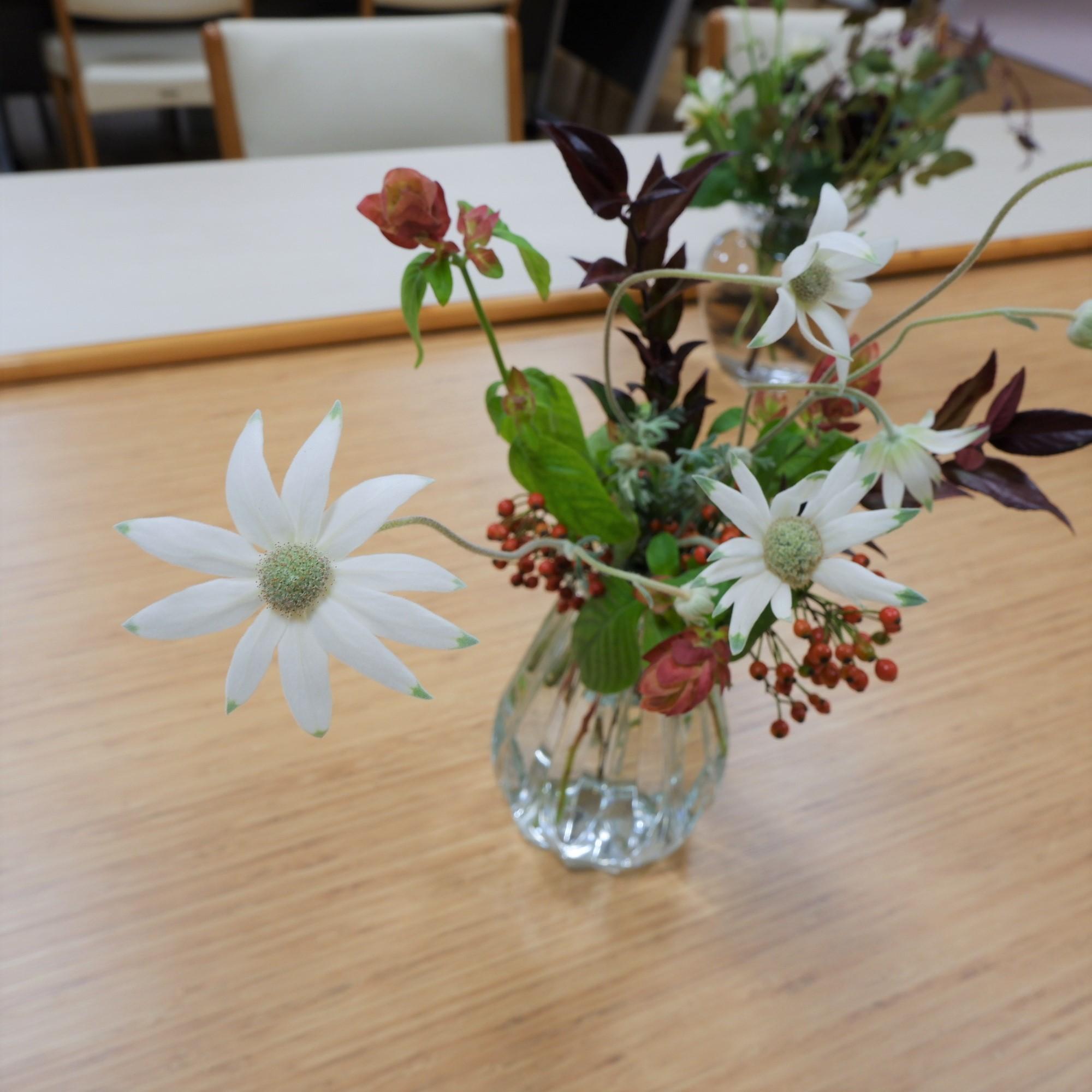 オークリーフ(絵画教室の花8)_f0049672_18501713.jpg