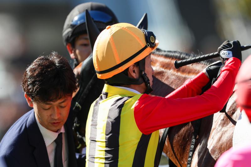 2019年11月23日 JRA年間100勝&ラジオNIKKEI杯京都2歳S(GⅢ)_f0204898_18163256.jpg