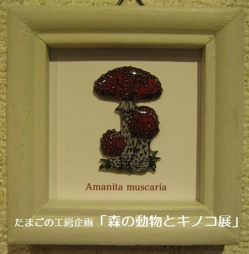 たまごの工房企画「森の動物とキノコ展」 その6_e0134502_18241523.jpg